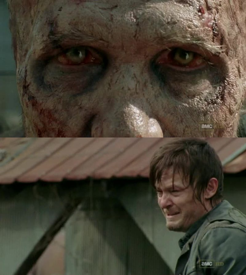 Poor Daryl 😢 he just wanted to have his brother back...