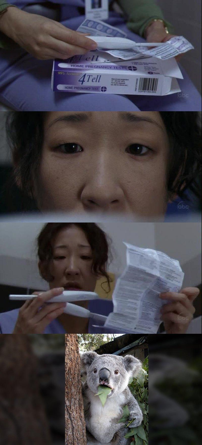 Cristina grávida??? 😱