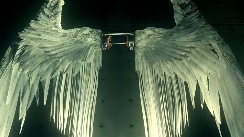 The wings look so damn majestic!