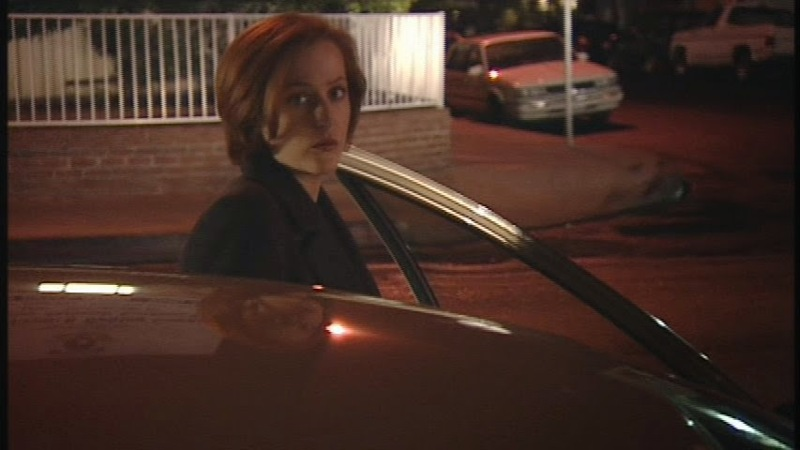 """Scully hiding from cameras with her """" they don't pay me enough for this"""" face  is my new favorite spiritual animal"""