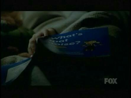 "Did anyone else noticed ""What's that noise?"" is the title of the book Ella was reading during the previous episode?"