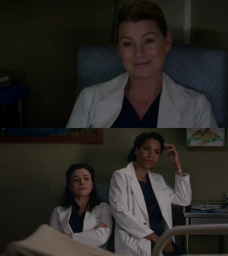 I want more scenes with Maggie,Amelia and Meredith together. They are so funny.