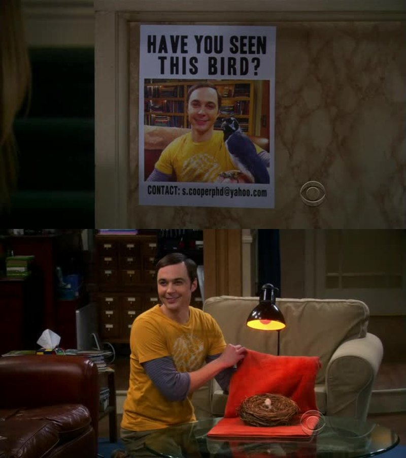 OMG HAHAHAHAHA I love Sheldon! He's the best