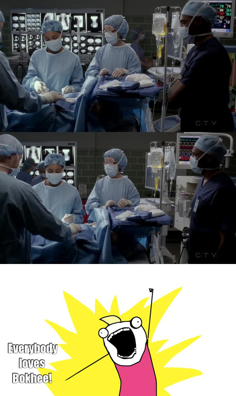 You can't call yourself a Grey's Anatomy fan unless you know who Bokhee is.  She's the Queen.