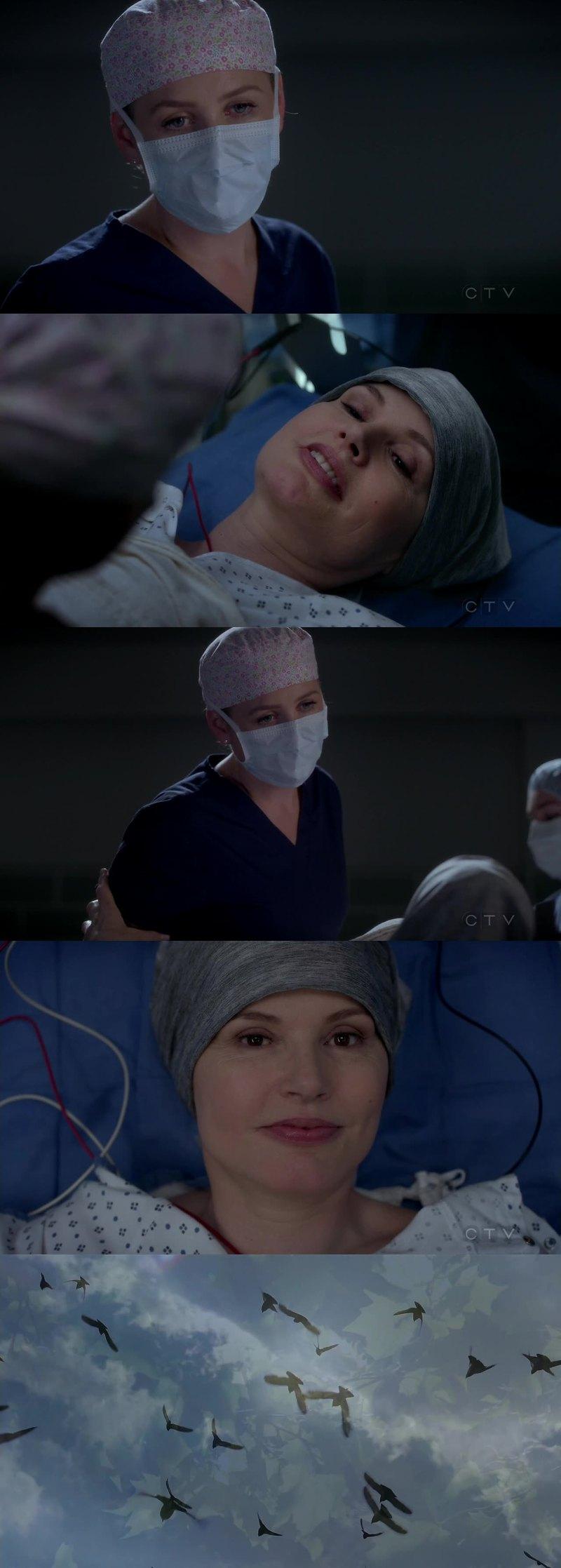 Torcendo muito pela Amelia, ela é maravilhosa! A evolução da personagem e da amizade da Herman e Arizona é incrível! Me deixa tão encantada...