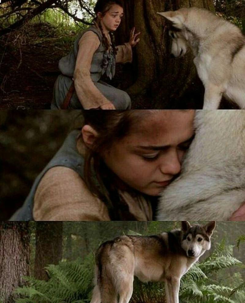 Arya and Nymeria 😻🐺🐾