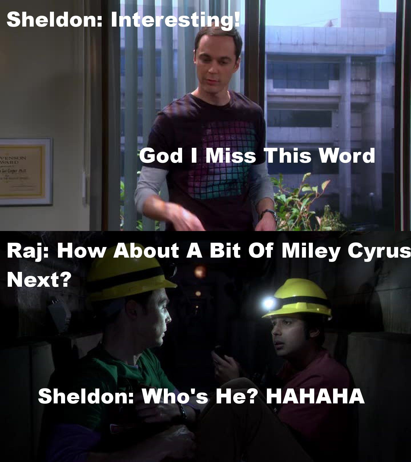 Raj/Sheldon: Loved All The Scenes With Them! But the scene with Rajesh explaining to Sheldon about who's Miley/Hannah was too funny.