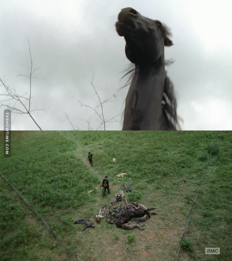 Le moment le plus triste de cette épisode? : La mort du cheval...😢