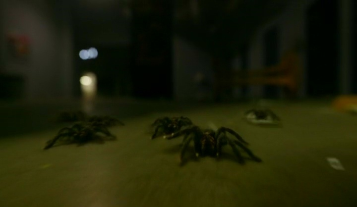 Arachnophobia!! What did I tell you?! I knew there would be a spider episode. I watched this ep standing up and dancing the lambada! Christ all Mighty my heart rate spiked up to 105 bpm!