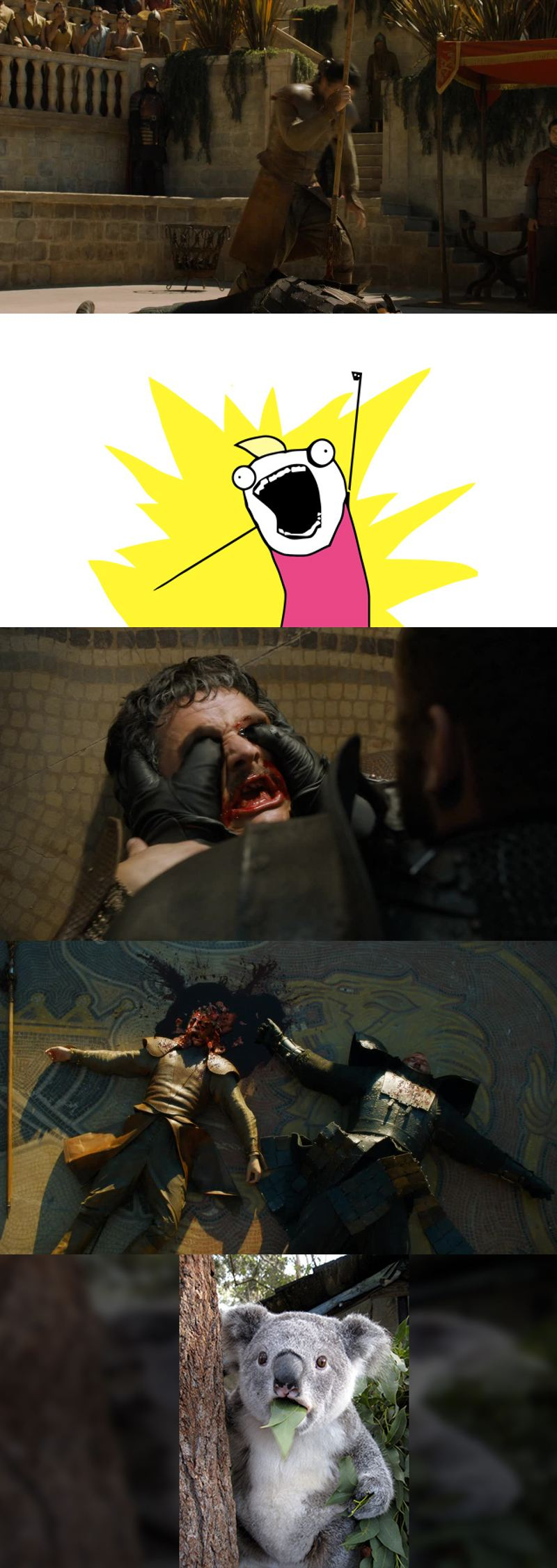 Summary of the episode...