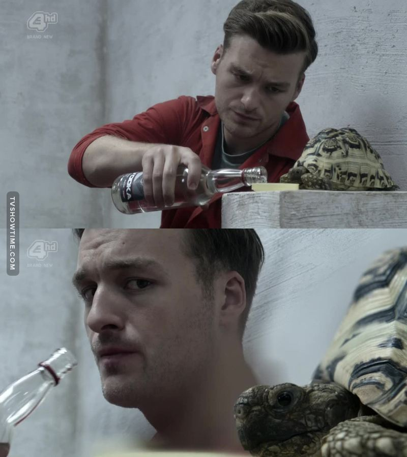 J'aimerai bien savoir si Alex va sodomiser la tortue?