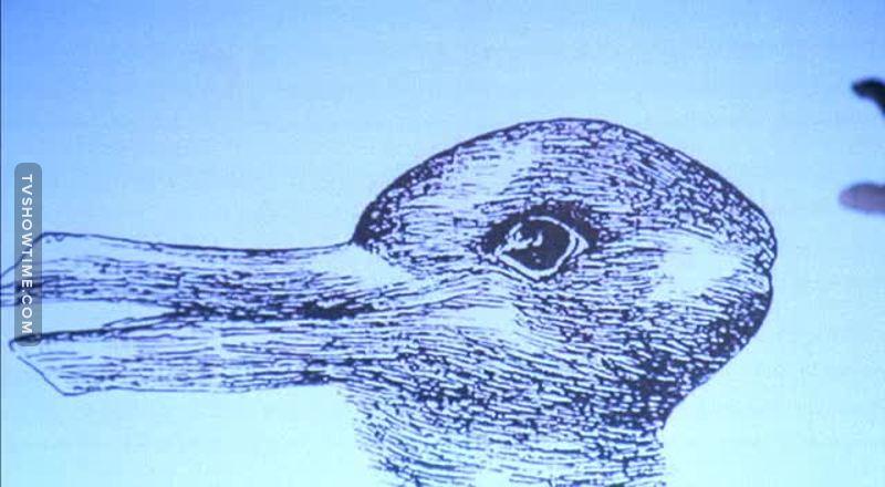 è un oca o un coniglio?