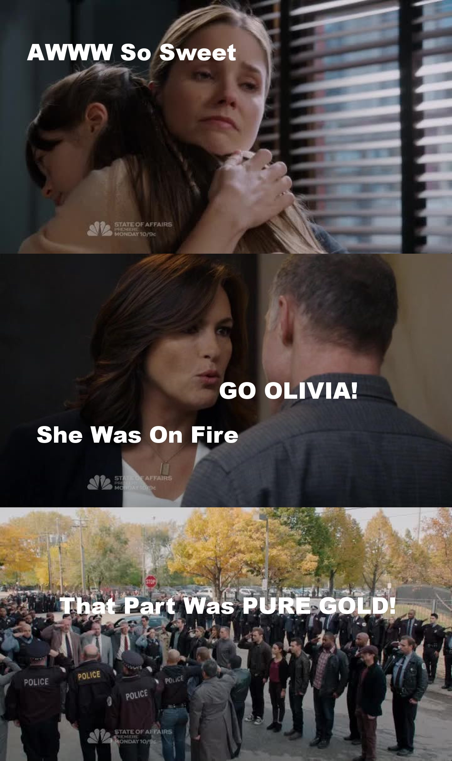 FANTASTIC CROSSOVER! LOVE Every Minute Of It  So Much Drama/Action Kudos To All 3 Shows CF & SVU & CPD  I Just Wish We Had More Scenes Of Lindsay & Halstead    PS: Sophia Bush & Mariska Hargitay Stole The Show.They Were Amazing!  APPLAUD APPLAUD APPLAUD!