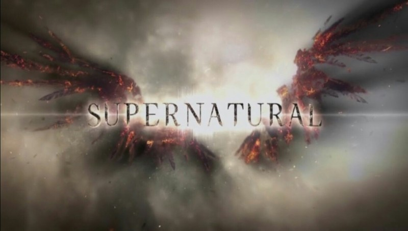 The logo just keeps getting better and better but the logo for season 8 is the best so far