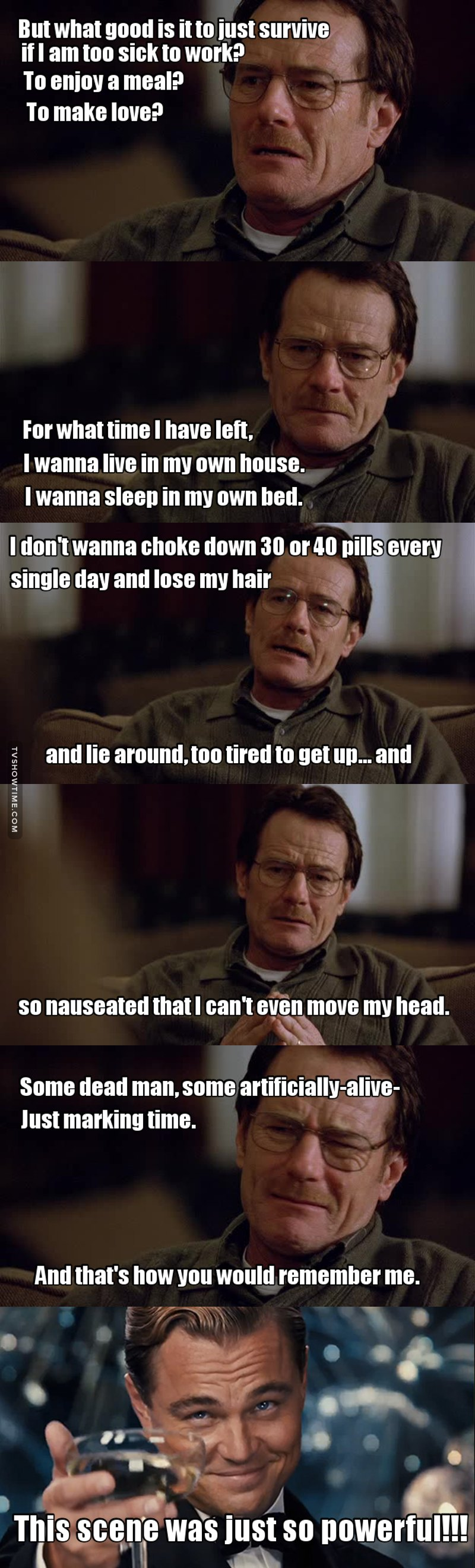 Bryan Cranston totally nailed this scene!!!!