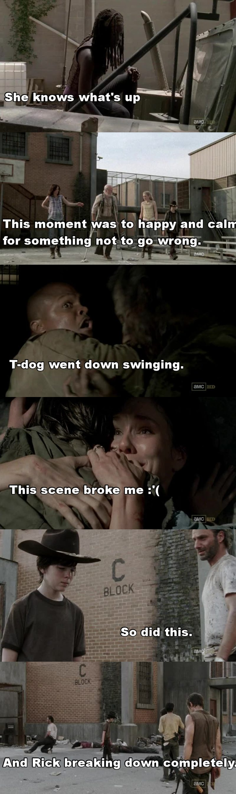 A bit too much happened in this episode.  That asshole that opened the gates and led the walkers in :/  Carl should not have had to go through that, that was horrible.  The pain was real.  R.I.P Lori and T-dog