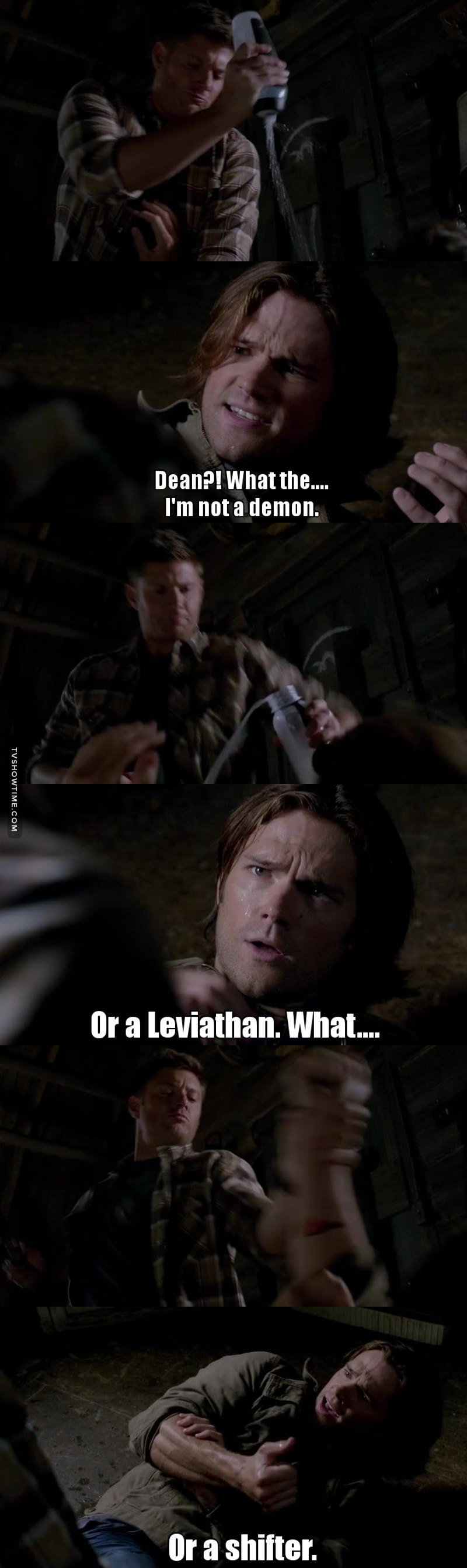 Dean is always my favorite, but I don't get why he's so upset with Sam, after all Dean had a year off before, when he was with Liza and Ben, he didn't hunt during that time. I'm still pissed about losing Bobby and Castiel.  Loved the scene where they found each other in the cabin!