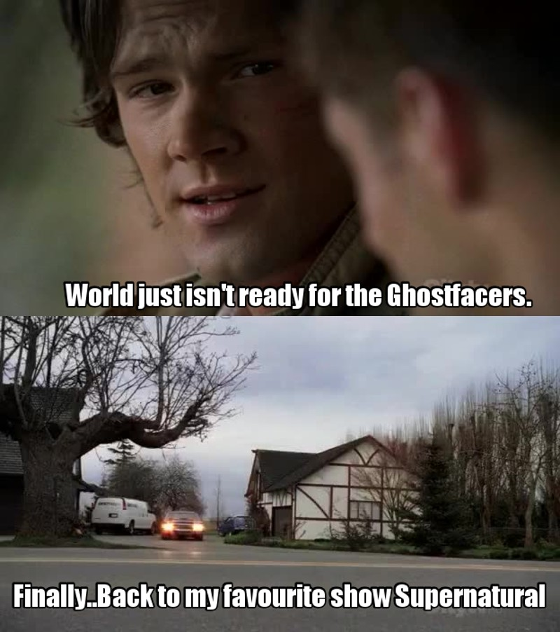 Please excuse Ghostfacers from the future episodes...
