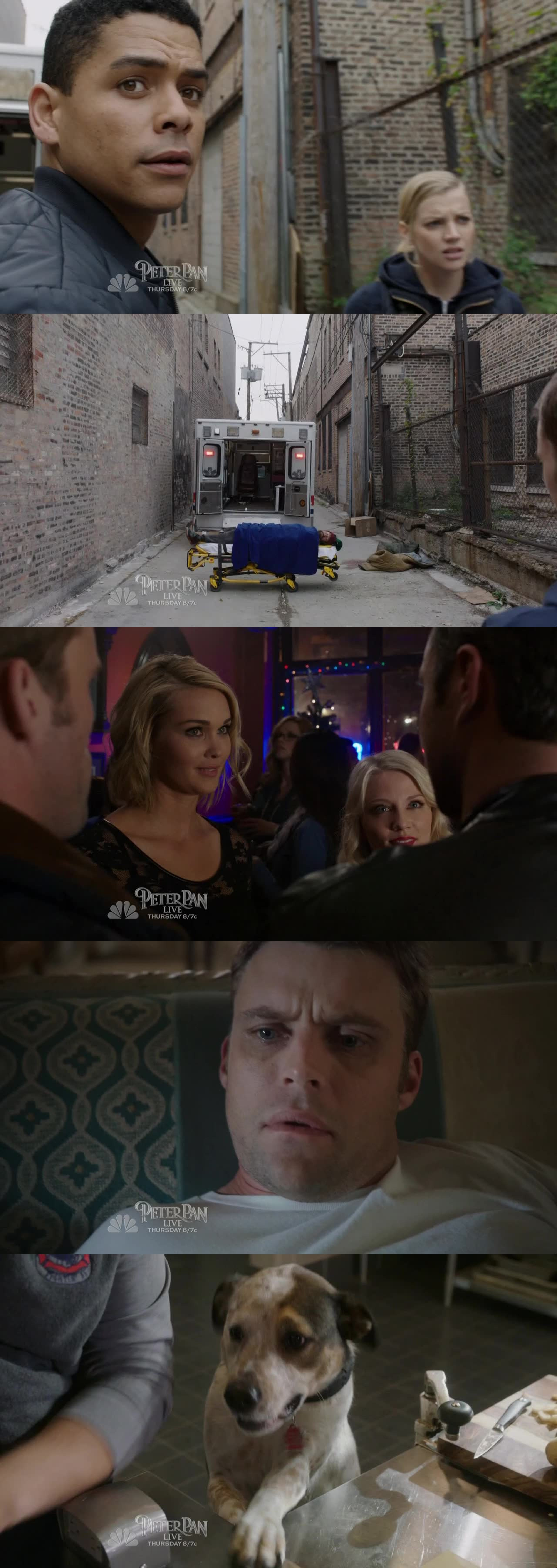 I WANT TO FIND THEM!!! :(  Casey's very bad trip... Harsh for Dawson! Dawsey will come back <3  PS : CUTEST dog ever? :)