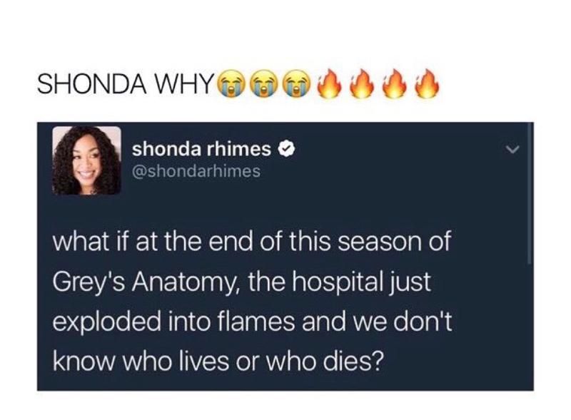 SHE WASN'T KIDDING!!