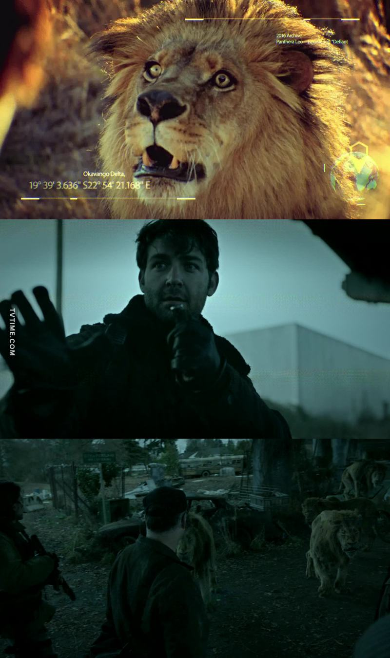 so,can he realy control the lions with his mind?  so wonderful