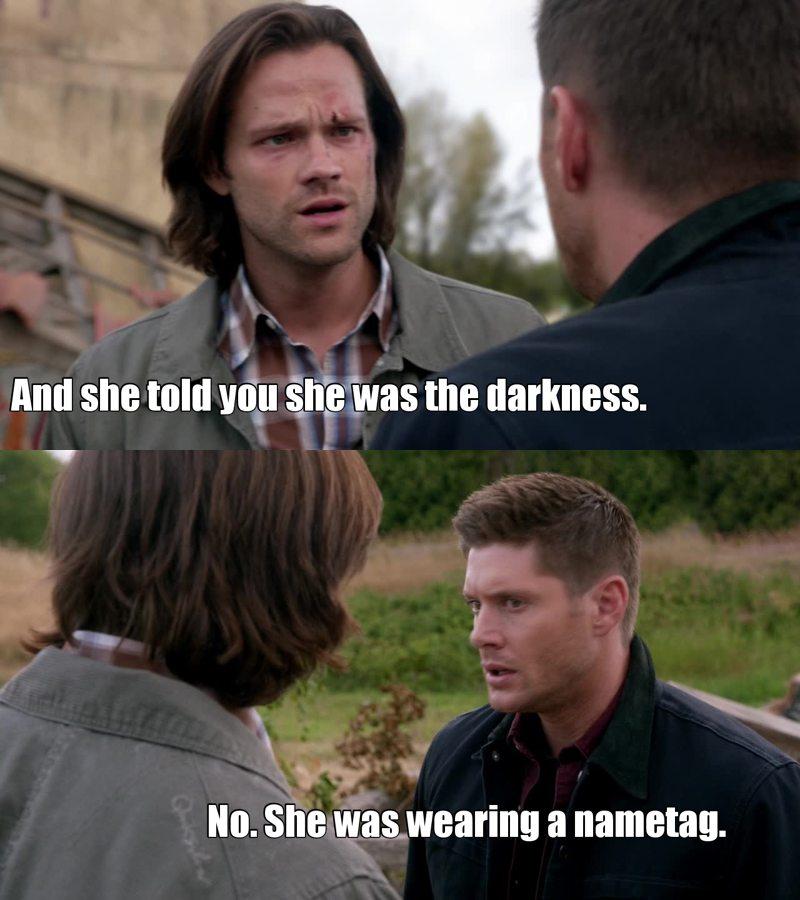 What do you think, Sam ? 😂😂