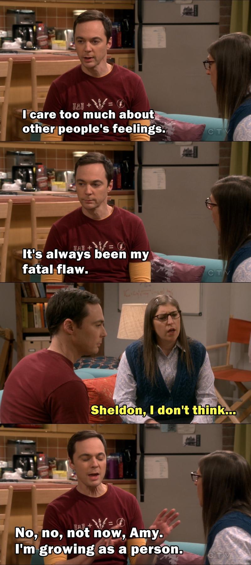 Sheldon's fatal flaw
