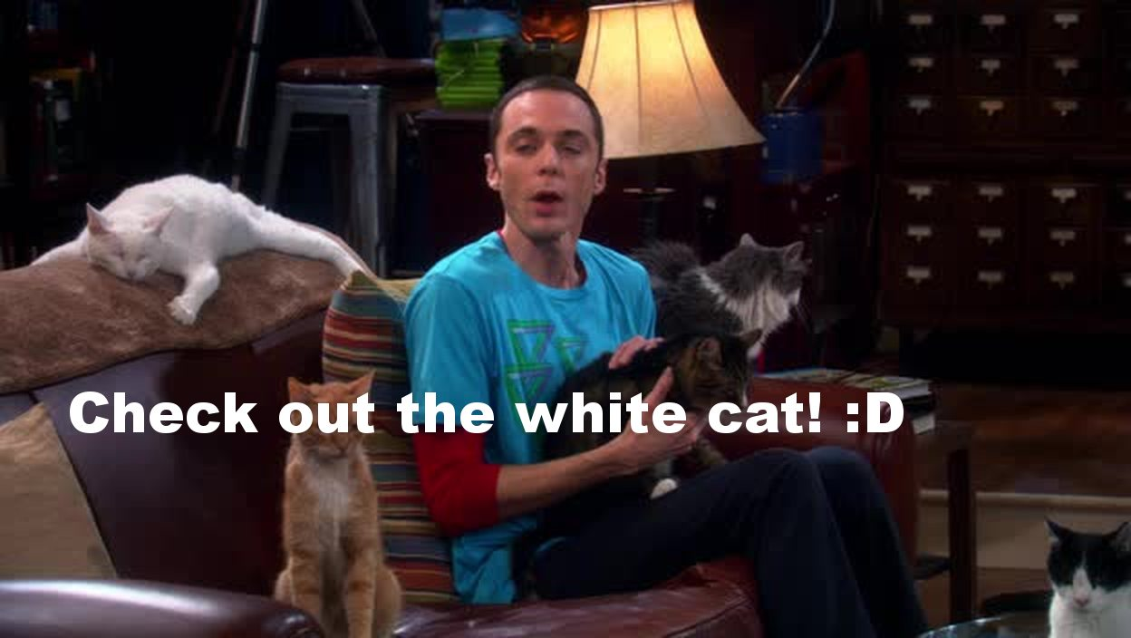 Sheldon's mother is seriously awesome!  'Here's your cat. And here's your 20$.' Wait... what?!