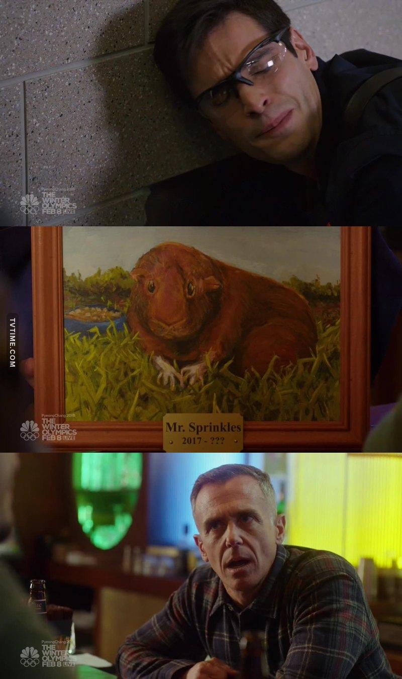 Aww, the poor hamster 😢 Herman's reaction was soooooo funny 😂