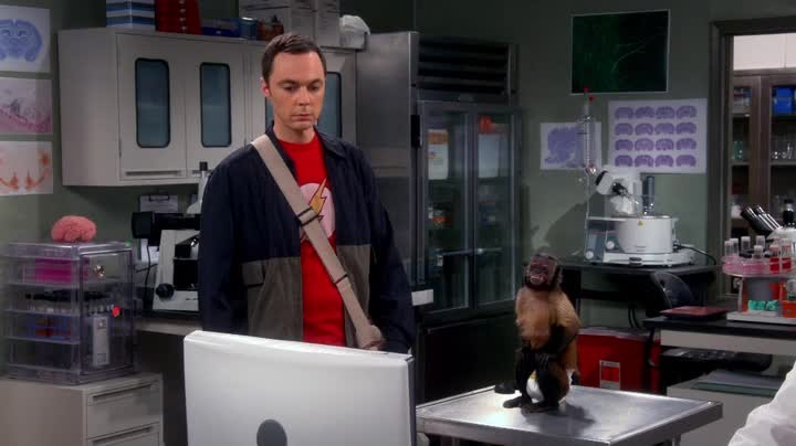 Des fois, on aurait envie de lui foutre des gifles à Sheldon! Courageuse Emy de rester avec^^