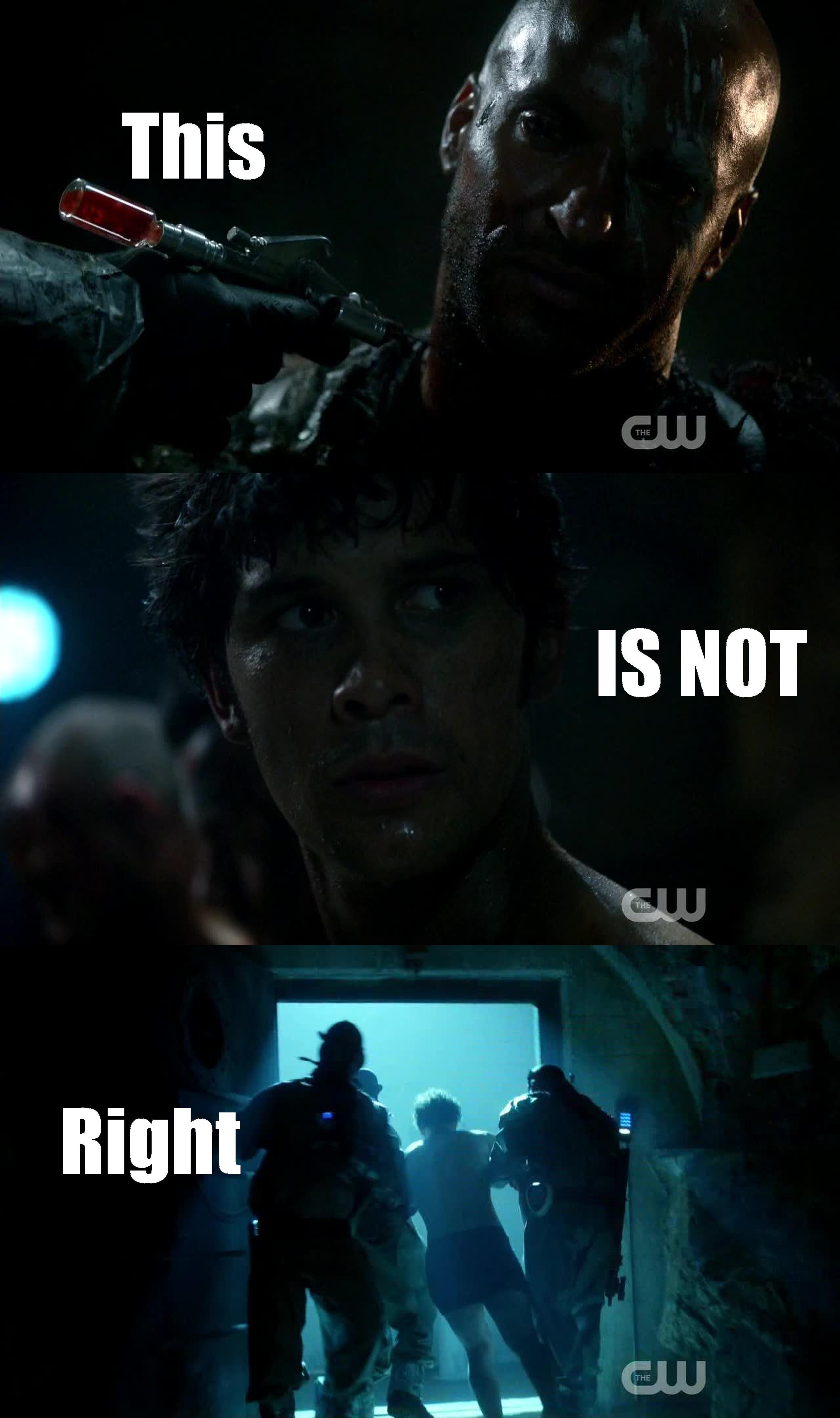 Don't you dare hurt bellamy!! :|