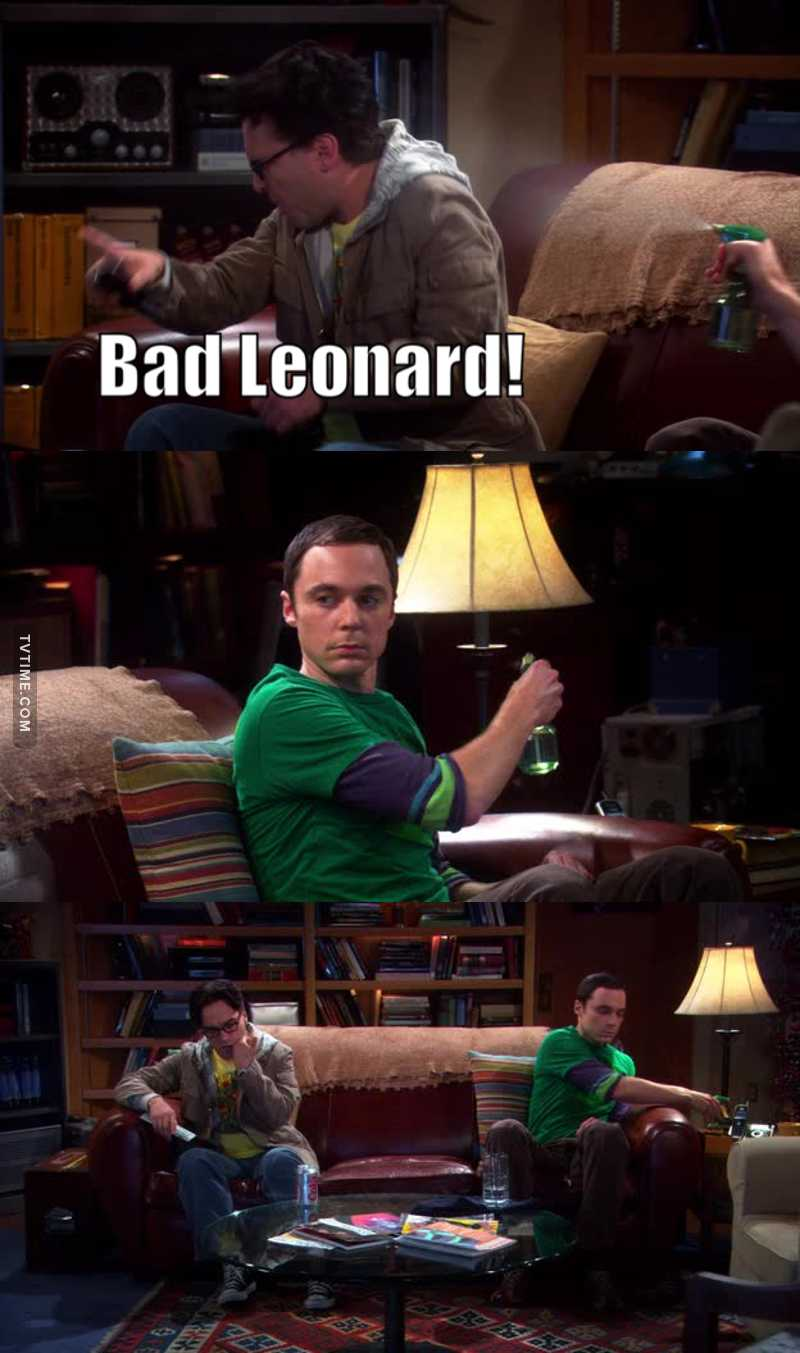 Sheldon is the best 😂😂😂