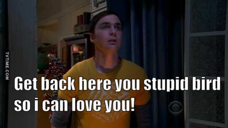 Oh Sheldon 😂😂😂