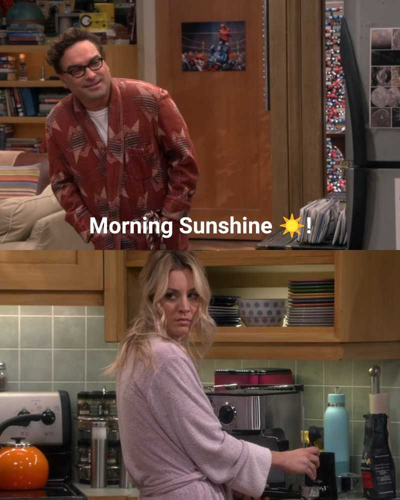 Leonard and Penny  representing all couples in the world.. 😂 😂  ending was just hilarious! 🤣🤣
