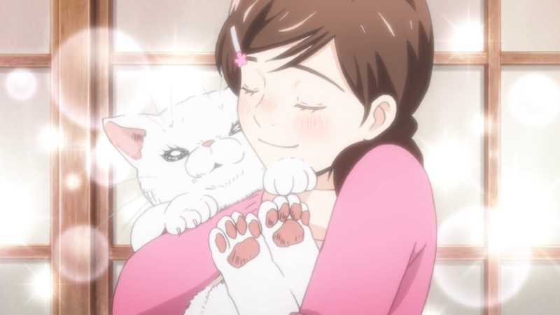 Shinobu is being so sweet, calm, house mom and cat lover I couldn't not see the similarities with Akari from March comes in like a lion