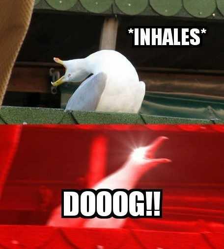 Daryl: