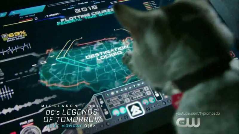 Zari: literally a cat.  Also Zari: still the smartest person around.