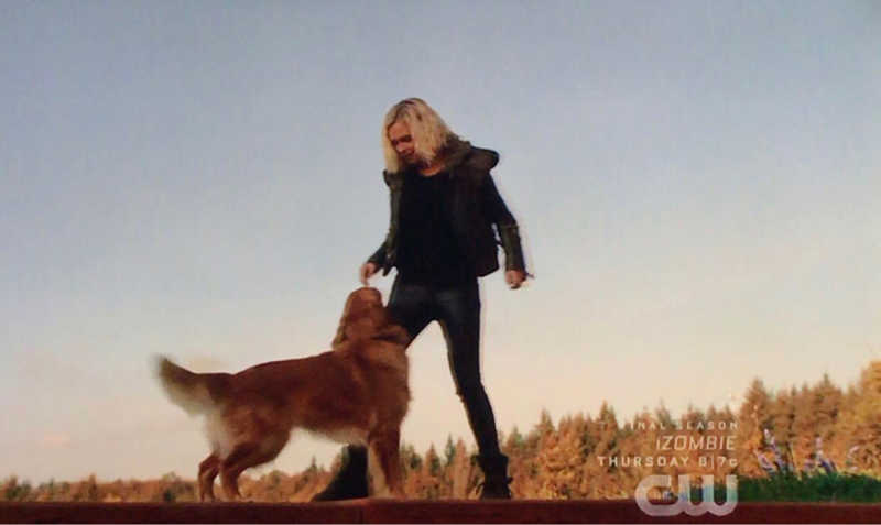 the dog was the star of tonight's episode that's all i gotta say!