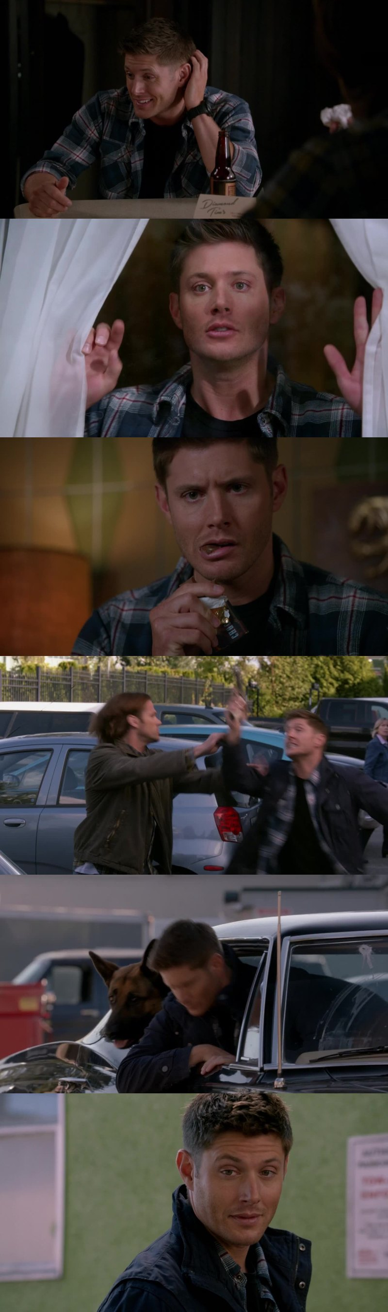 It's the only serie I know who affords episodes like this one... Ep who have no interest for the story but who are so funny! It's a part of what I love so much in this show! And Dean as a dog is awesome! 😂