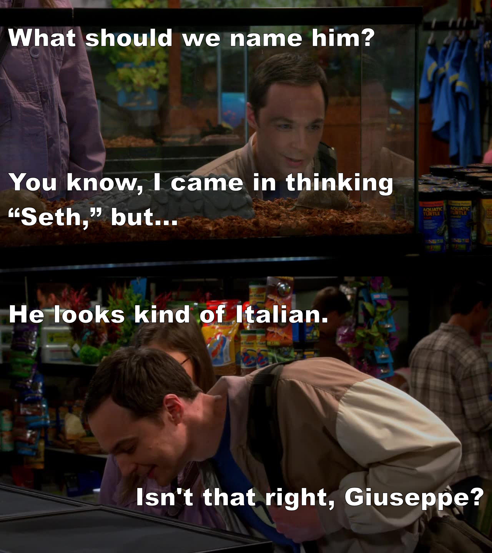 How cool is Sheldon?