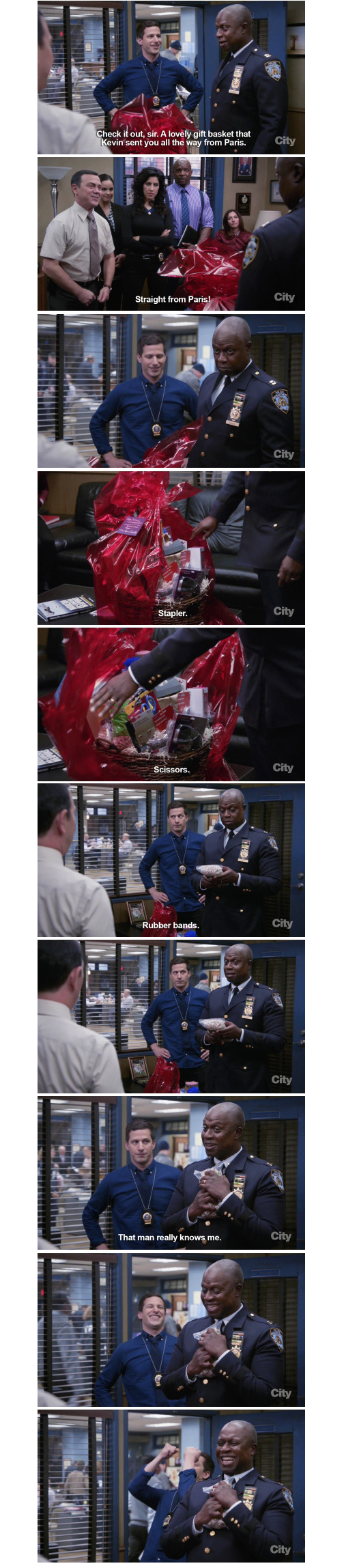 It's impossible to not like captain Captain Ray Holt
